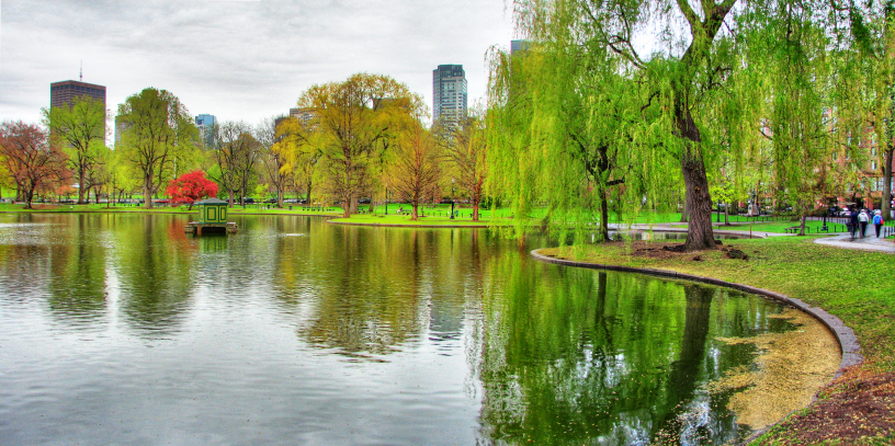 This image shows Boston common tour and freedom trail tour which are included in the best things you can do in boston